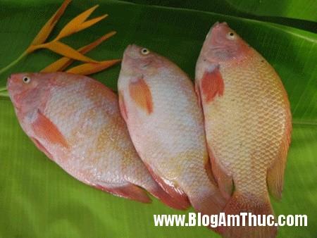 cadieuhong Bí quyết giúp giữ cá tươi lâu hơn
