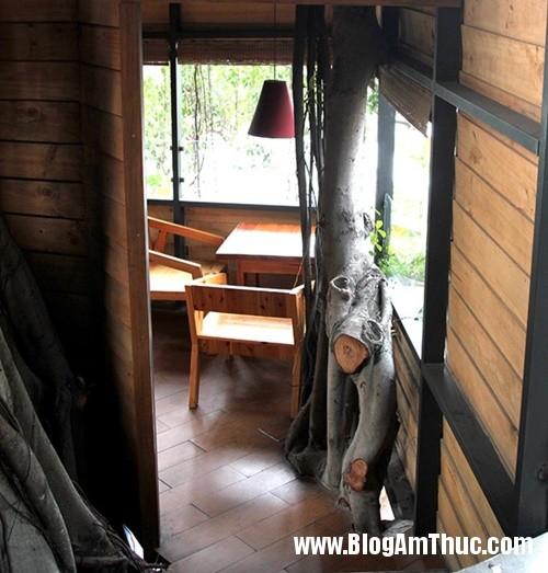 Quan ca phe tren cay doc dao nhat Sai Gon5 Thưởng thức cà phê trên cây cổ thụ ở Tphcm