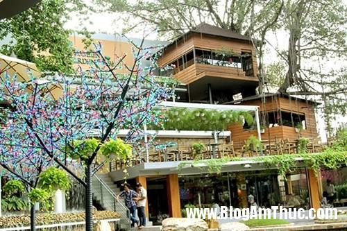 Quan ca phe tren cay doc dao nhat Sai Gon9 Thưởng thức cà phê trên cây cổ thụ ở Tphcm