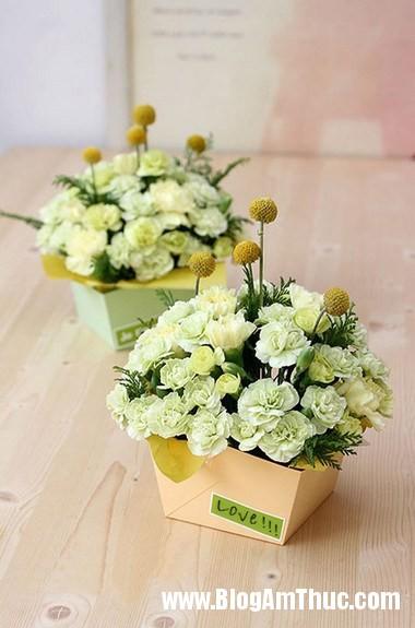 Cam hoa cam chuong voi hop giay that dep 1 Làm hộp cắm hoa cẩm chướng bằng giấy thật xinh
