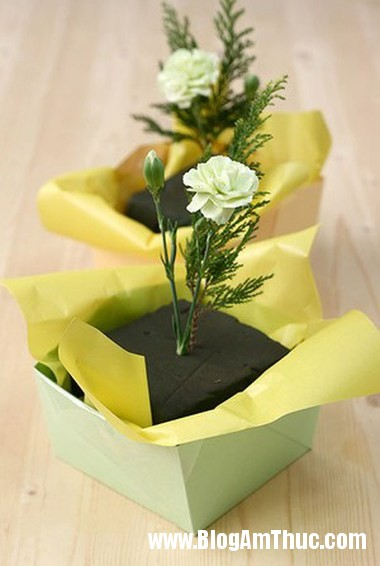 Cam hoa cam chuong voi hop giay that dep 5 Làm hộp cắm hoa cẩm chướng bằng giấy thật xinh