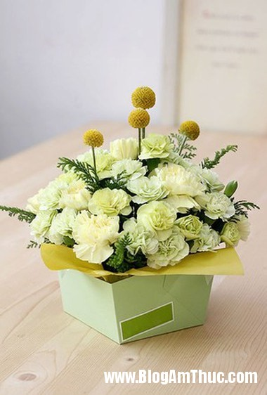 Cam hoa cam chuong voi hop giay that dep 7 Làm hộp cắm hoa cẩm chướng bằng giấy thật xinh