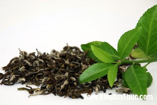 1 6737 1379056220 Cách xử lý và bảo quản trà bị mốc