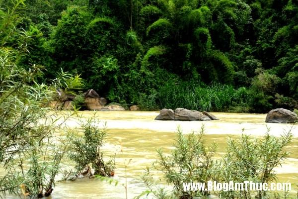 23385 20170612153930 Những đặc sản độc lạ của vùng đất cao nguyên  Madagui – Lâm Đồng