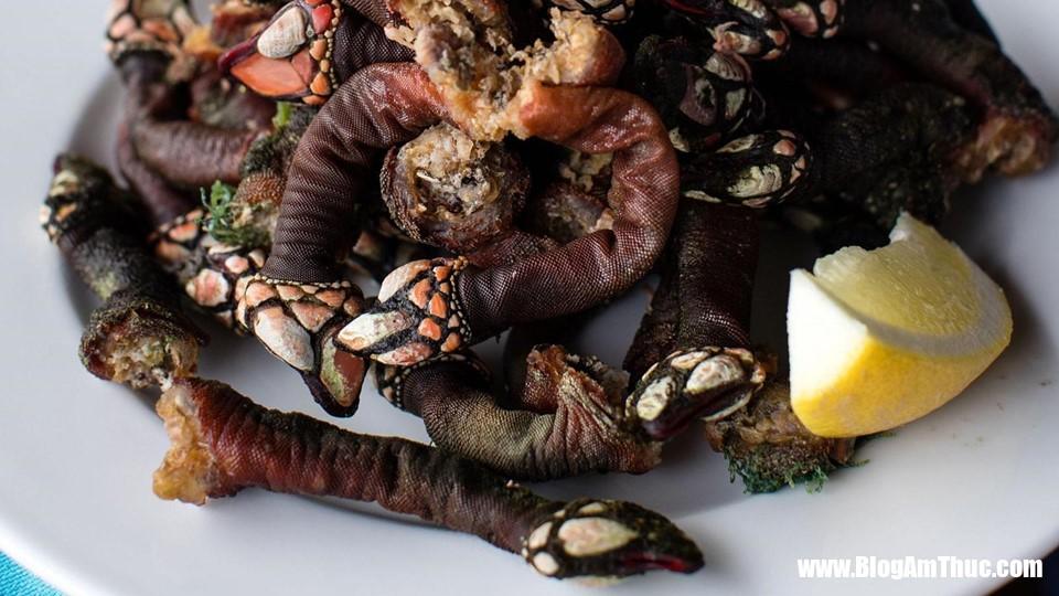zing 9 Đằng Hồ là loại ốc gì mà đắt và hiềm đến thế?