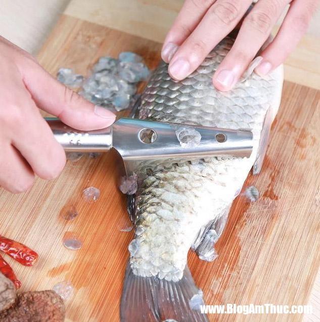 4 meo cao vay ca nhe tenh khong lo bi vang tu tung 1 1561014336 782 width633height637 Những mẹo cạo vảy cá nhẹ tênh, không lo việc bị văng tứ tung